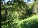 The Carpathians 3