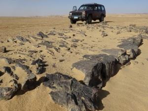 The Quarry Road 2
