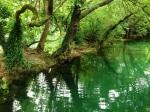At Krka National Park 2