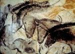 Chauvet Horses
