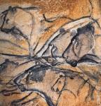 Chauvet Lion Panel