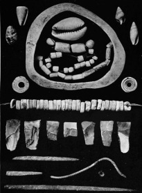 Objects discovered in Nawami from Petrie Book