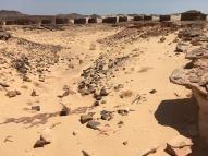 Nawamis Field at Ein Hudra